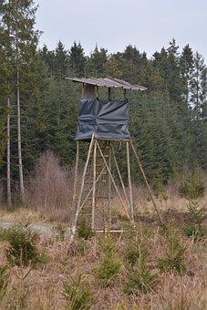 Forest, Landscape, Hut, Observation Post, Nature, Trees