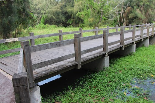 Taiwan, Taitung, Forest, The Sea, Lake, Bridge, Park