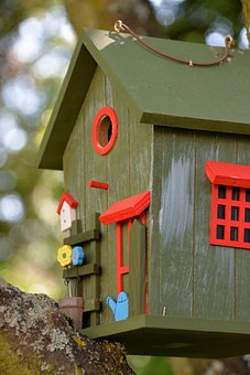 Aviary, Colorful, Color, Bird Feeder, Tinker, Feeding