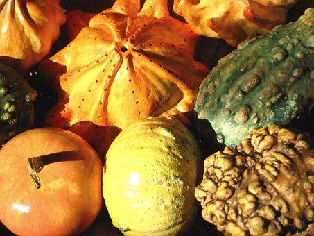 Decorative Squashes, Pumpkins, Autumn, Decoration