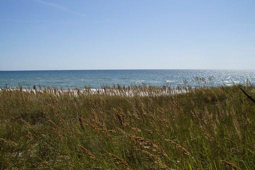 Dune, Dune Landscape, Grasses, Sea, Ocean, Baltic Sea