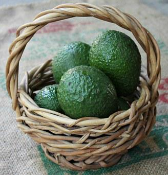 Avocado, Basket, Health, Food, Organic, Green, Diet
