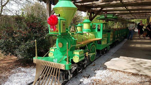 Zoo, Train, Gulf Port, Trained, Play, Entertain