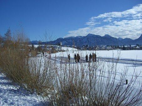 Winter, Snow, Lake, Ice, Curling Ground, Athletes