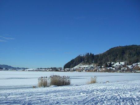 Hop On The Lake, Winter, Snow, Lake, Ice, Footprints