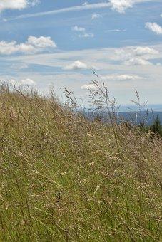 Landscape, Mountains, Highlands, Braunlage