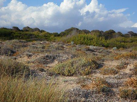 Dunes, Dune Landscape, Landscape, Mediterranean, Sand