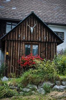 Small Hut, Deer Antler, Hiking, Nature, Hike, Styria