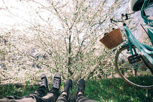 Bicycle, Bike, Feet, Flowers, Footwear, Grass, Nature