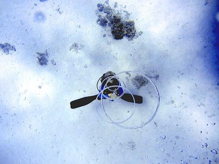 Diving, Sea, Ozan, Breath, Divers, Underwater, Kringel