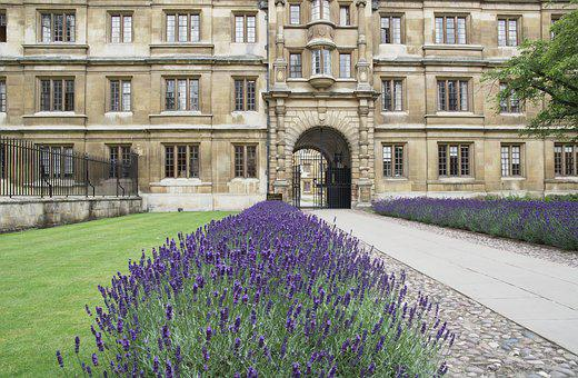 Clare College, Cambridge, Lavender, Old Building
