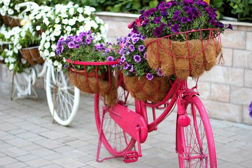 Floral Bike, Garden, Decoration, Uae
