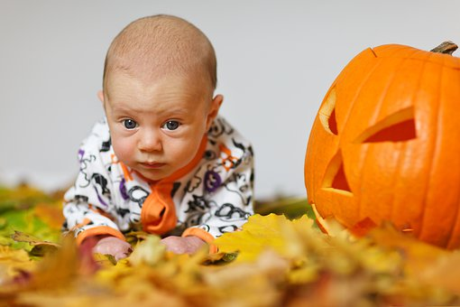 Adorable, Autumn, Baby, Boy, Child, Costume, Cute, Fall