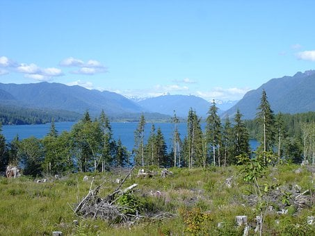 Lake Quinault, Olympic National Park, Lakes, Scenery