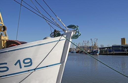 Shrimp, Cutter, Port, Husum, North Sea