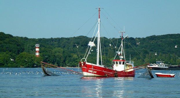 Elbe, Fishing, Cutter, Red, Fisherman, Lower Saxony