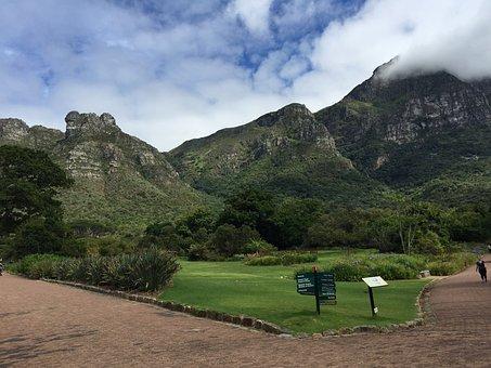 Kirstenbosch, Gardens, Newlands, Cape Town, Nature