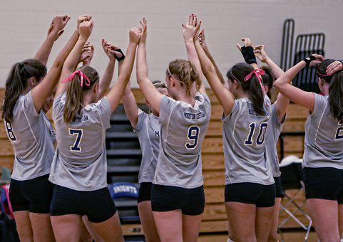 Volleyball Team, Girls, Players, Team Mates, Game