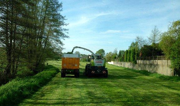 Tractor, Chopper, Grass Clippings, Meadow, Farm