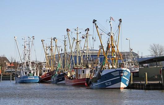 Shrimp, Cutter, Port, Fishing Port, Husum, North Sea