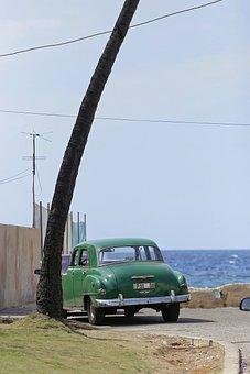 Cuba, Havana, Oldtimer, Palm, Coast, Miramar, Green