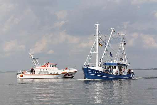 North Sea, Shrimp, Harbour Festival, Husum, Sar