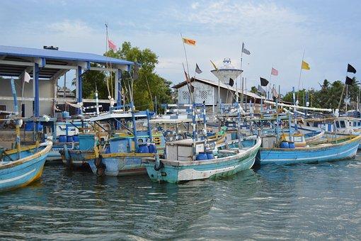 Boats, Valaichenai, Town, Sri Lanka