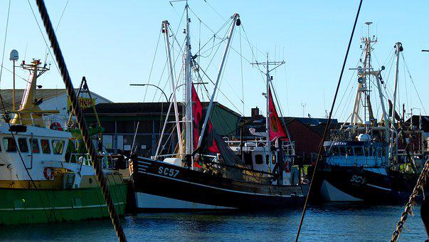 Cutter, Fishing, Maritime, Elbe, Water, Fishing Vessel