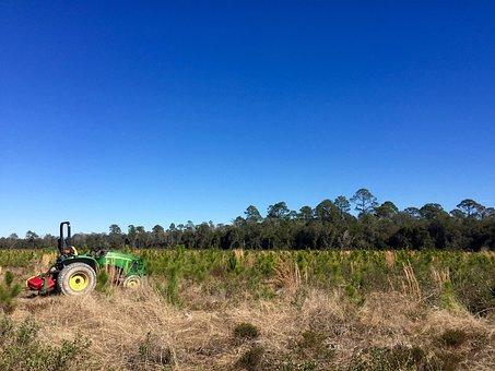 Tractor, Field, Sky, Blue, Clear, Empty, Far, Trees