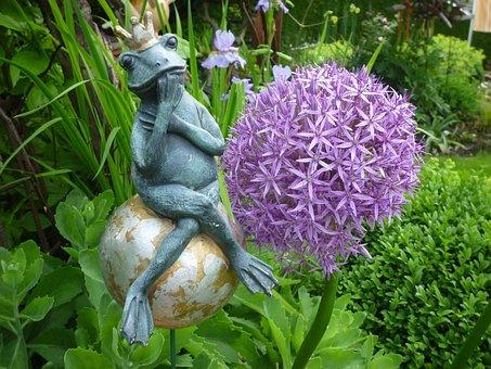 Frog, Clay Figure, Garden, Ornamental Onion