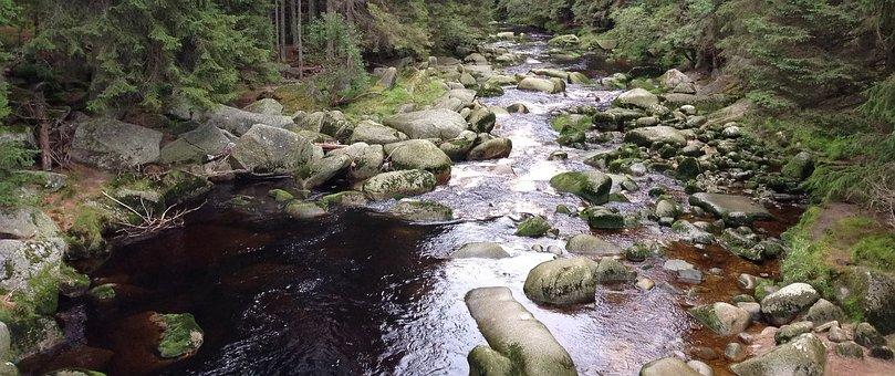 Water, Stones, Stream, Nature, šumava, Forest