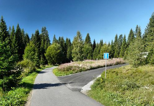 šumava, Peace, Tourism, Road, Pthe, Forest