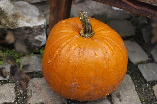 Pumpkin, Autumn, Halloween, Autumn Background