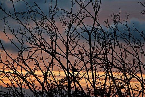 Sunset, Dusk, Dawn, Sunrise, Travel, Summer, Sky