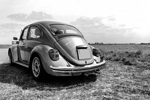 Volkswagen, Beetle, Bug, Black White, Nature, Oldtimer