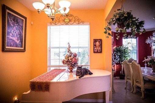 Interior, Piano, Room, Stylish, Modern, Luxury, White