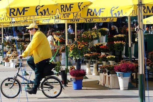 Cycler, Flower Seller, City Square, Krakow, Poland