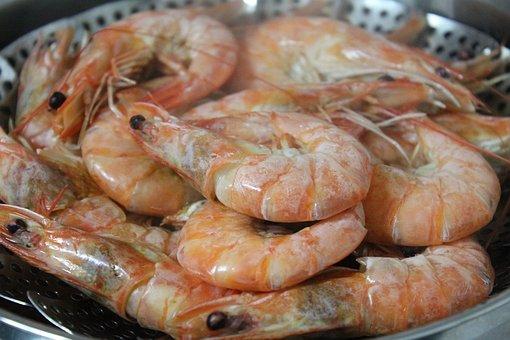 Shrimp, Food, Steamed Shrimp, Cooking, Seafood