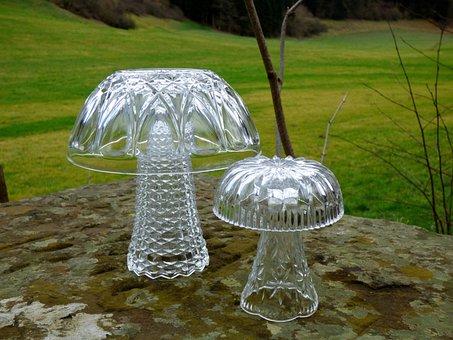 Mushroom, Glass Mushroom, Decoration, Atmosphere