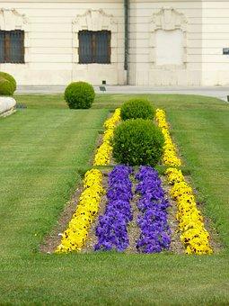 Bed, Flower Bed, Colorful, Color, Spring, Bloom
