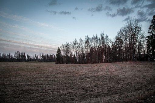 Field, Dark, Landscape, Nature, Dramatic, Natural