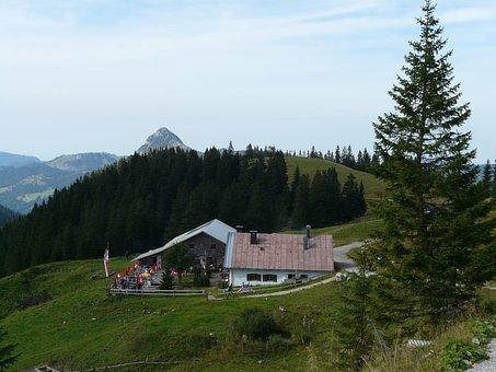 Hut, Mountain Hut, Home, Nature, Allgäu, Alpe, Refuge