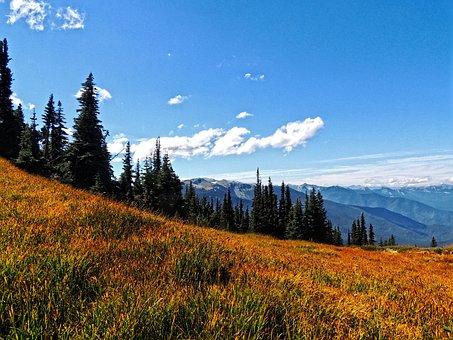 Deer Park, Olympics, Washington, Washington State