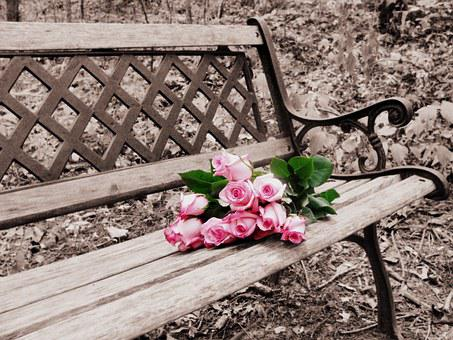 Roses On Bench, Selective Coloring, Selective Color