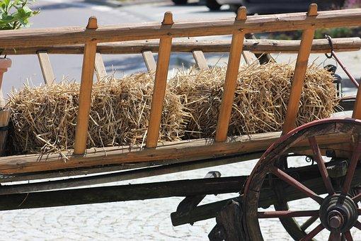 Hay, Wagon, Farm, Wheel, Wood, Summer, Natural