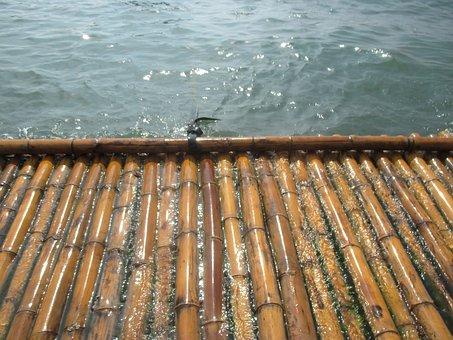 Bamboo, Batangas, Watter, Floating