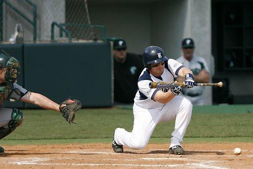 Baseball, College Baseball, Bunt, Home Plate, Hit, Bat