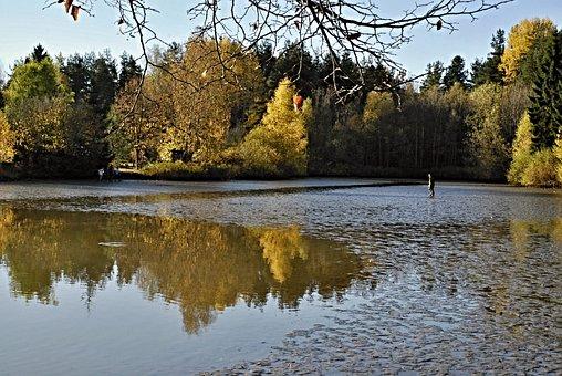 South Bohemia, Harvesting, Pond, Launch
