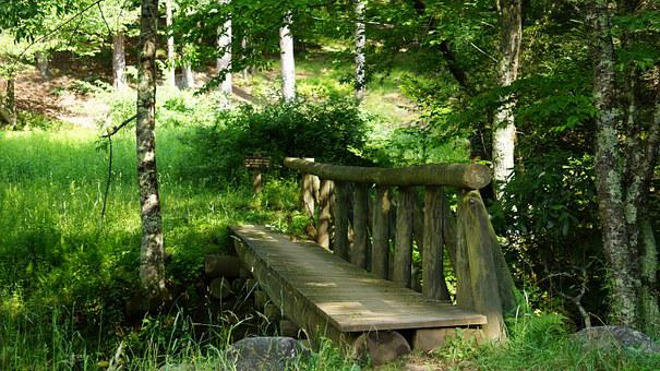 Bridge, Dolly, Sods, Wilderness, Virginia, Wooden