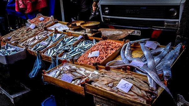 Fish, Food, Market, Sale, Seafood, Stall, Street
